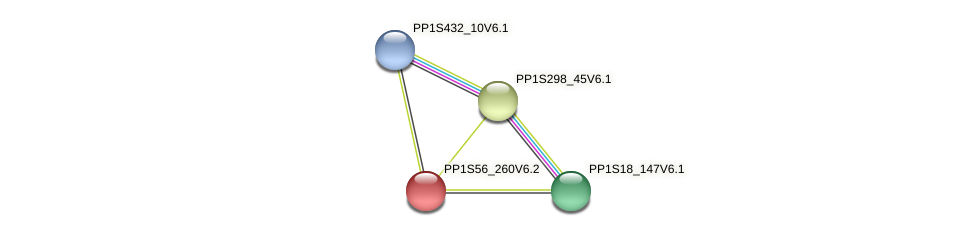 PP1S56_260V6.1 protein (Physcomitrella patens) - STRING interaction network