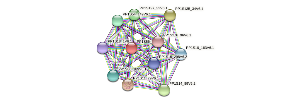 PP1S56_263V6.1 protein (Physcomitrella patens) - STRING interaction network