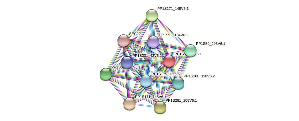 PP1S570_1V6.1 protein (Physcomitrella patens) - STRING interaction network