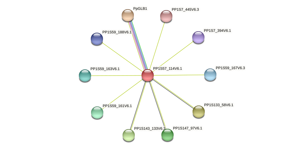 PP1S57_114V6.1 protein (Physcomitrella patens) - STRING interaction network