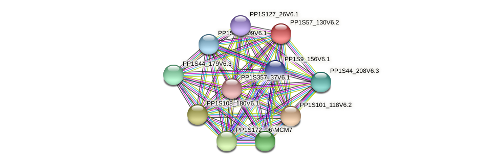PP1S57_130V6.2 protein (Physcomitrella patens) - STRING interaction network