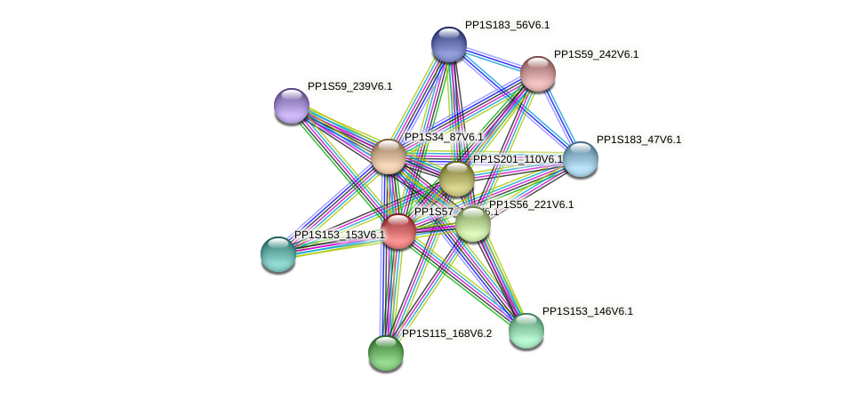 PP1S57_179V6.1 protein (Physcomitrella patens) - STRING interaction network