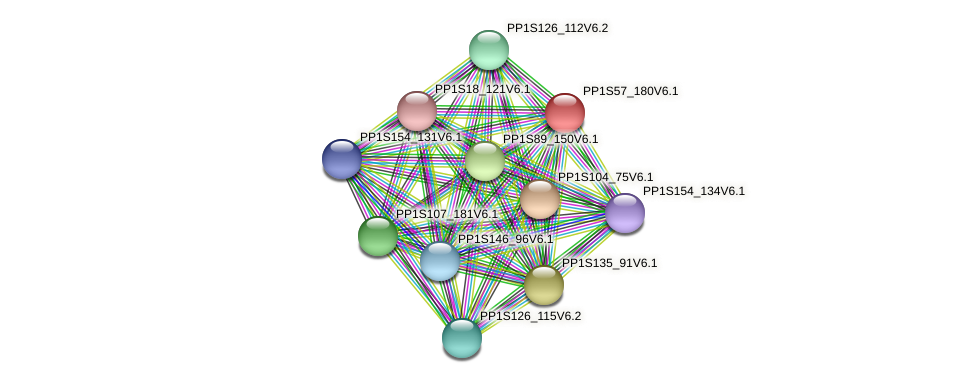 PP1S57_180V6.1 protein (Physcomitrella patens) - STRING interaction network