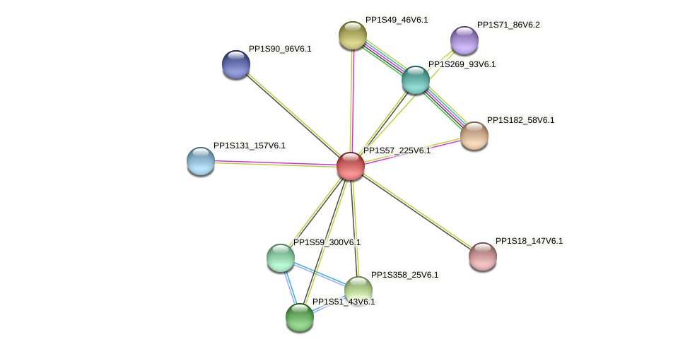 PP1S57_225V6.1 protein (Physcomitrella patens) - STRING interaction network