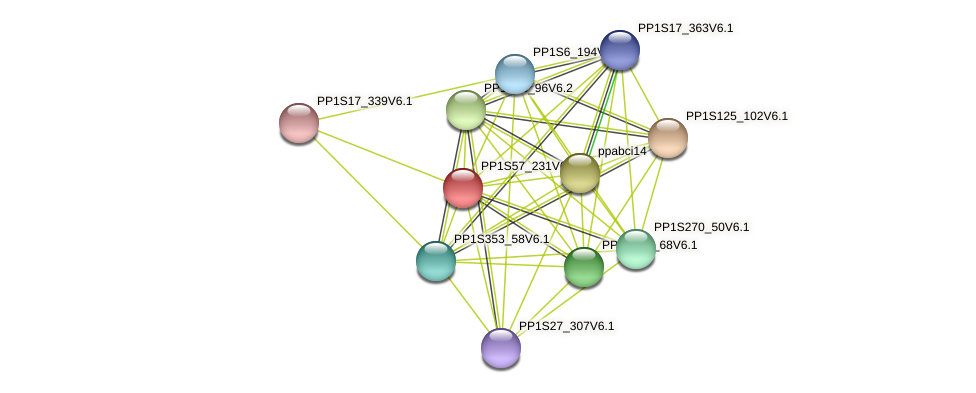 PP1S57_231V6.1 protein (Physcomitrella patens) - STRING interaction network