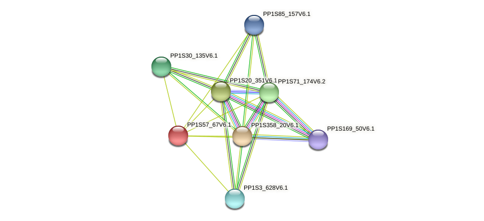 PP1S57_67V6.1 protein (Physcomitrella patens) - STRING interaction network