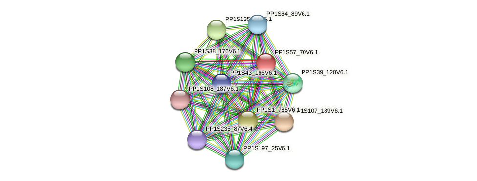 PP1S57_70V6.1 protein (Physcomitrella patens) - STRING interaction network