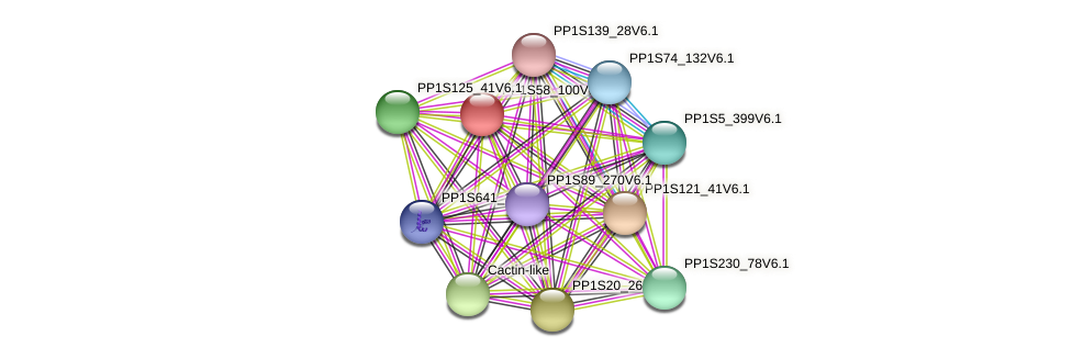PP1S58_100V6.1 protein (Physcomitrella patens) - STRING interaction network