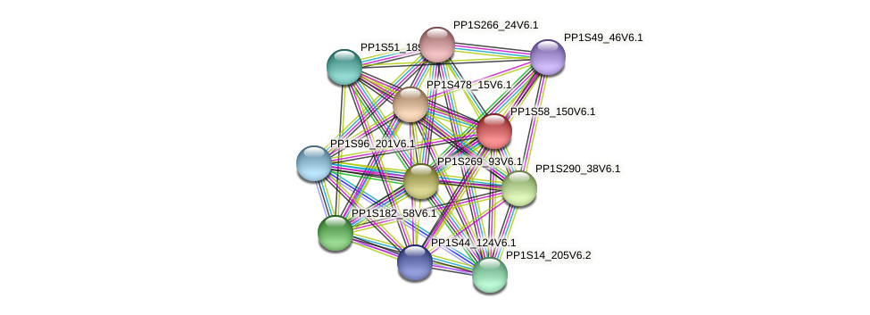 PP1S58_150V6.1 protein (Physcomitrella patens) - STRING interaction network