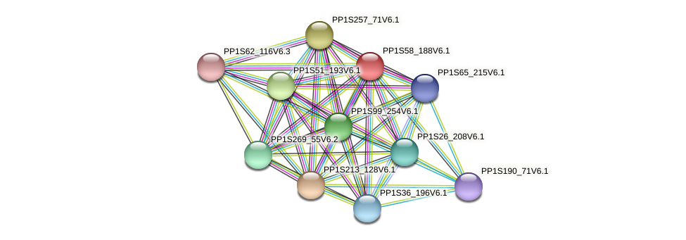 PP1S58_188V6.1 protein (Physcomitrella patens) - STRING interaction network