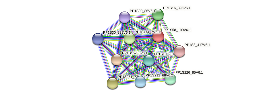 PP1S58_199V6.1 protein (Physcomitrella patens) - STRING interaction network