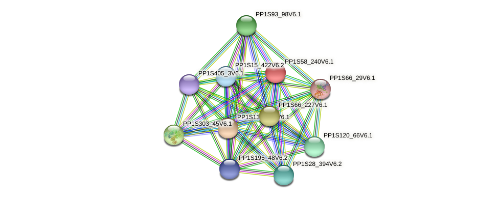 PP1S58_240V6.1 protein (Physcomitrella patens) - STRING interaction network
