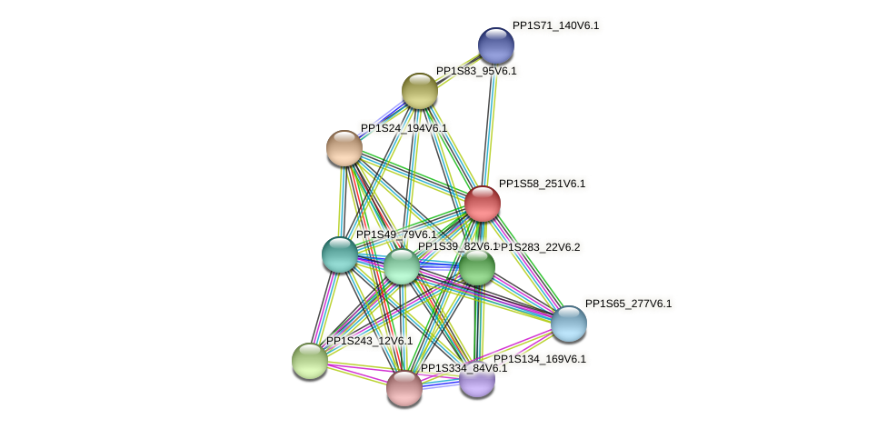 PP1S58_251V6.1 protein (Physcomitrella patens) - STRING interaction network