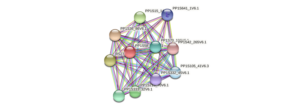 PP1S58_254V6.1 protein (Physcomitrella patens) - STRING interaction network