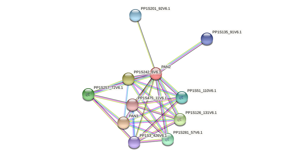 PP1S58_255V6.1 protein (Physcomitrella patens) - STRING interaction network