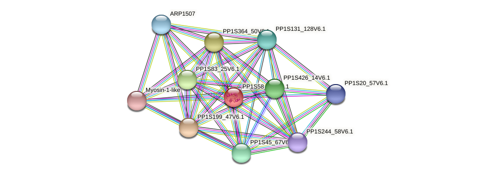 PP1S58_258V6.1 protein (Physcomitrella patens) - STRING interaction network