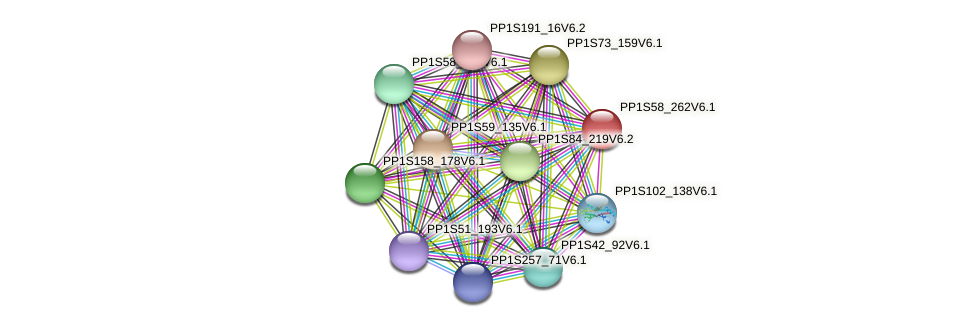 PP1S58_262V6.1 protein (Physcomitrella patens) - STRING interaction network