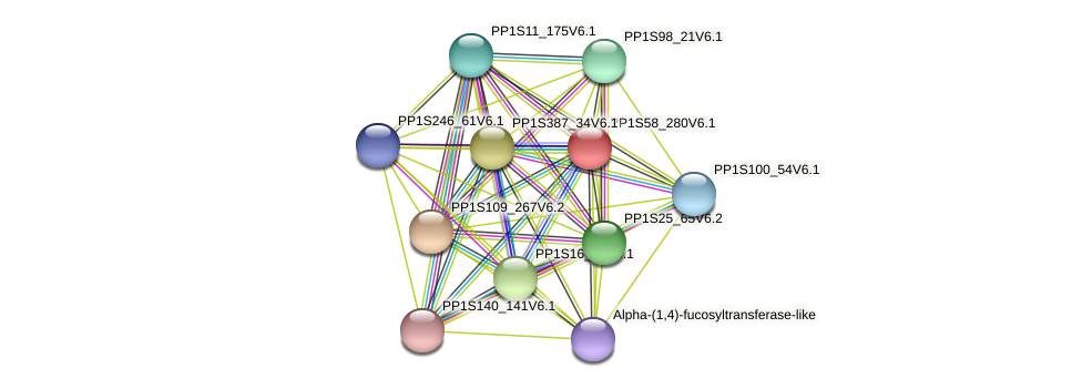 PP1S58_280V6.1 protein (Physcomitrella patens) - STRING interaction network
