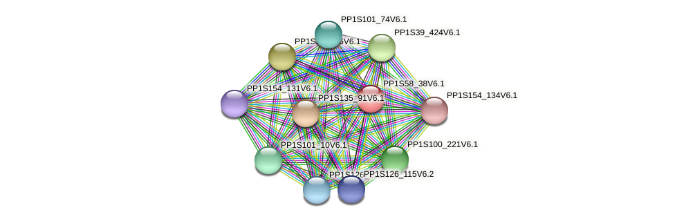 PP1S58_38V6.1 protein (Physcomitrella patens) - STRING interaction network