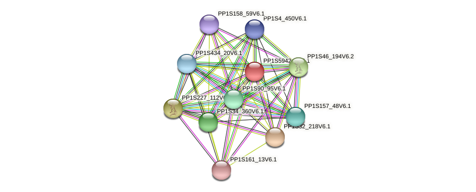 PP1S5942_1V6.1 protein (Physcomitrella patens) - STRING interaction network