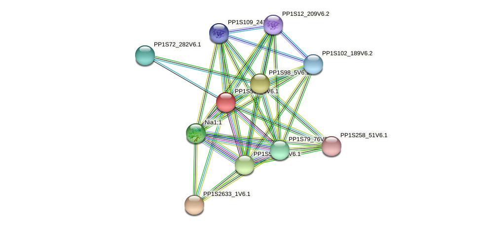 PP1S595_6V6.1 protein (Physcomitrella patens) - STRING interaction network