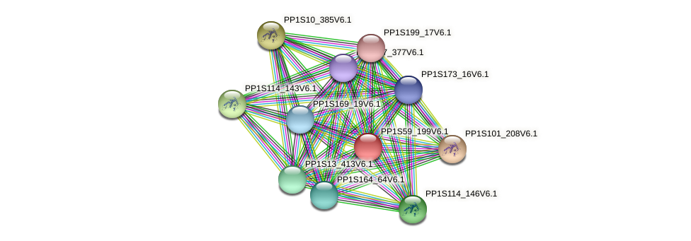 PP1S59_199V6.1 protein (Physcomitrella patens) - STRING interaction network