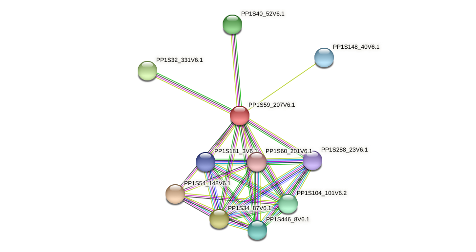 PP1S59_207V6.1 protein (Physcomitrella patens) - STRING interaction network