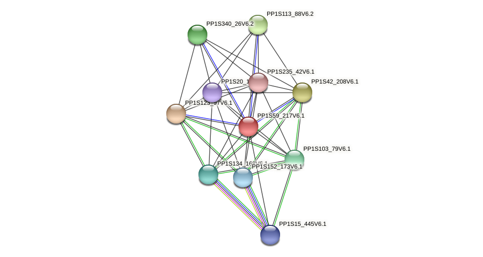 PP1S59_217V6.1 protein (Physcomitrella patens) - STRING interaction network