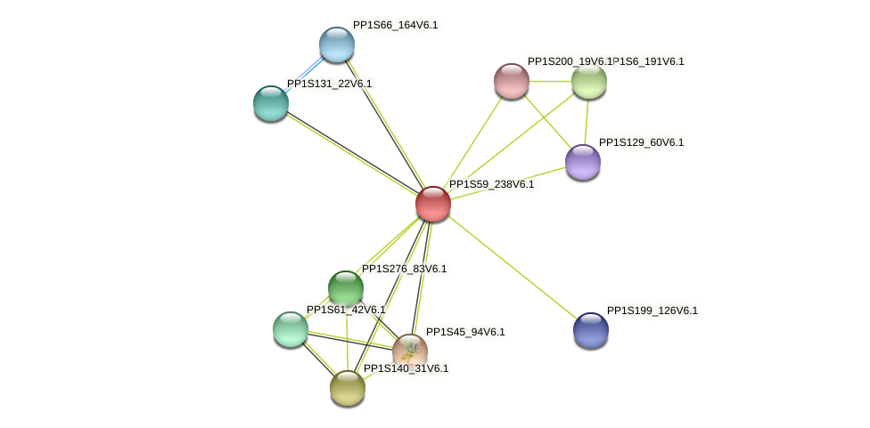 PP1S59_238V6.1 protein (Physcomitrella patens) - STRING interaction network