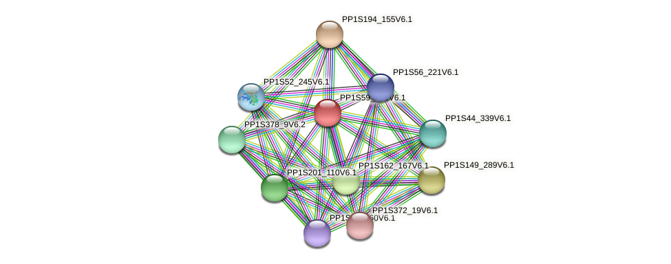 PP1S59_242V6.1 protein (Physcomitrella patens) - STRING interaction network