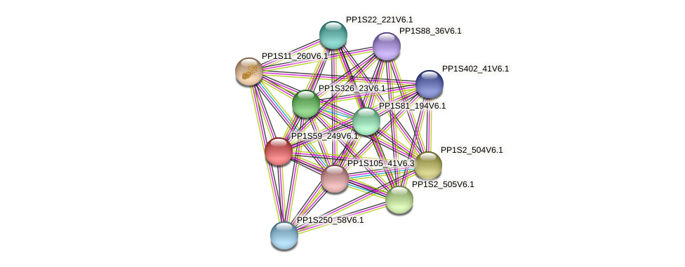 PP1S59_249V6.1 protein (Physcomitrella patens) - STRING interaction network
