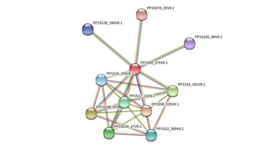 PP1S59_275V6.1 protein (Physcomitrella patens) - STRING interaction network