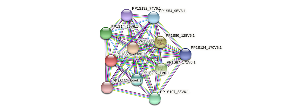 PP1S59_300V6.1 protein (Physcomitrella patens) - STRING interaction network