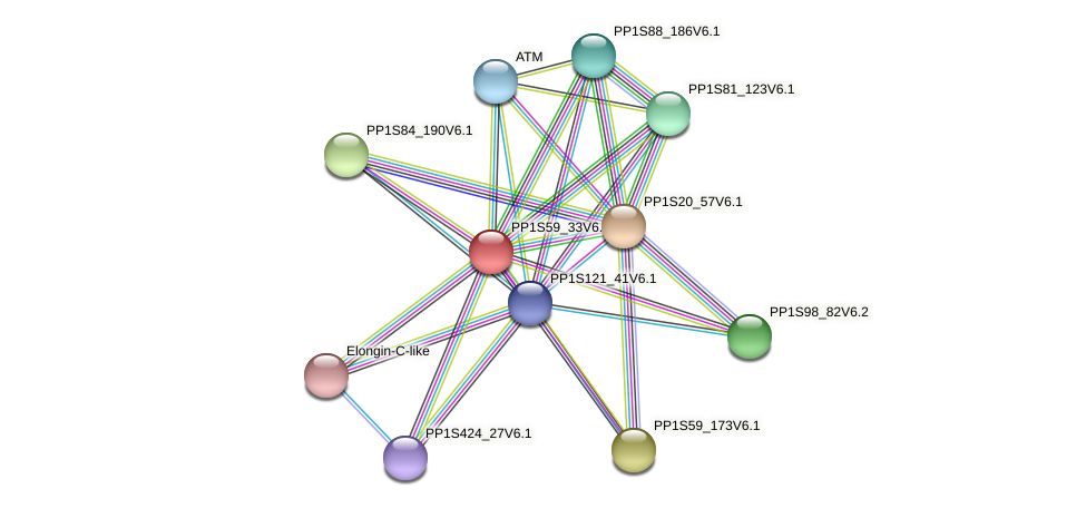 PP1S59_33V6.1 protein (Physcomitrella patens) - STRING interaction network