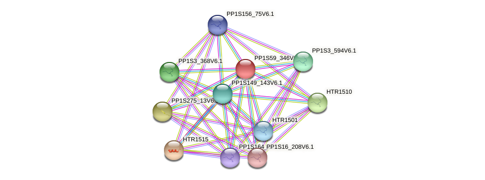 PP1S59_346V6.1 protein (Physcomitrella patens) - STRING interaction network