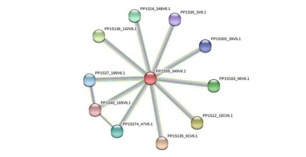PP1S59_349V6.1 protein (Physcomitrella patens) - STRING interaction network
