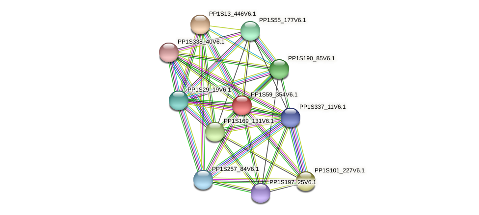 PP1S59_354V6.1 protein (Physcomitrella patens) - STRING interaction network