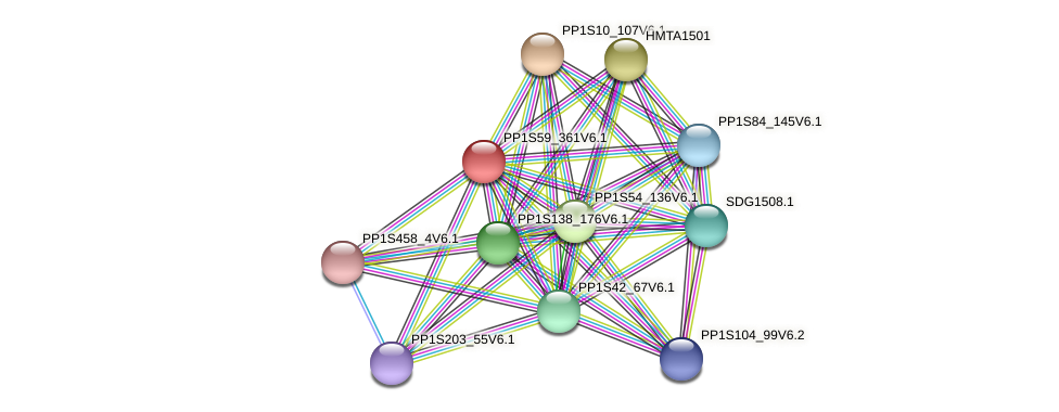 PP1S59_361V6.1 protein (Physcomitrella patens) - STRING interaction network