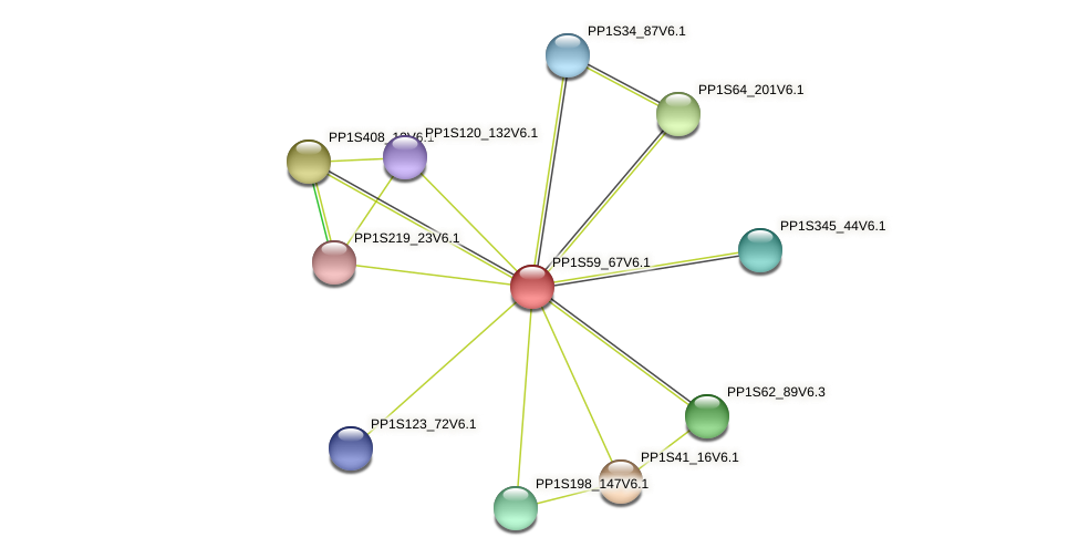 PP1S59_67V6.1 protein (Physcomitrella patens) - STRING interaction network
