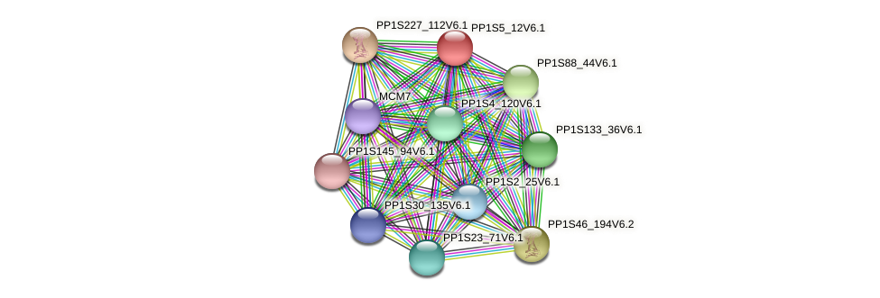 PP1S5_12V6.1 protein (Physcomitrella patens) - STRING interaction network