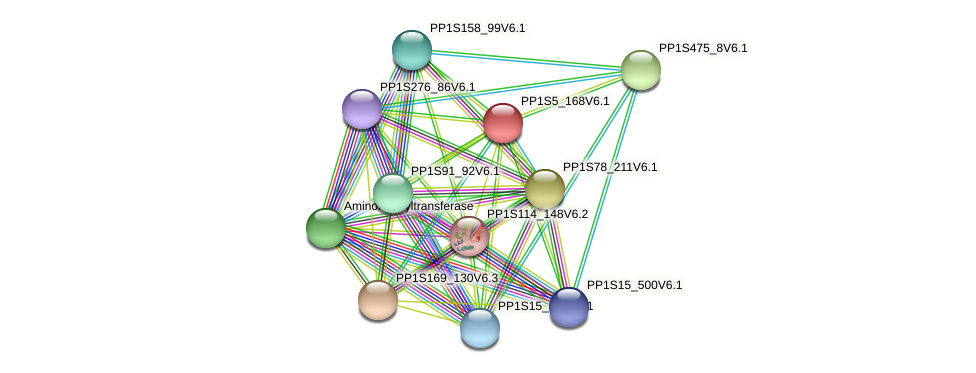 PP1S5_168V6.1 protein (Physcomitrella patens) - STRING interaction network