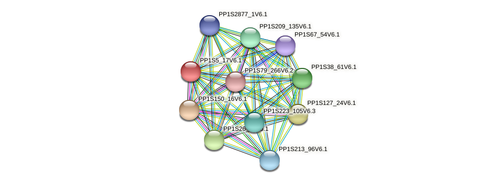PP1S5_17V6.1 protein (Physcomitrella patens) - STRING interaction network