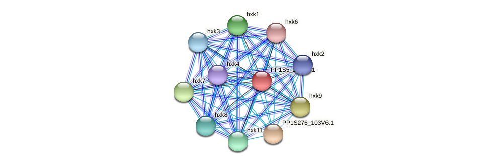 PP1S5_225V6.1 protein (Physcomitrella patens) - STRING interaction network