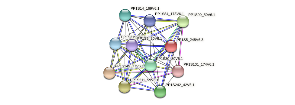 PP1S5_248V6.1 protein (Physcomitrella patens) - STRING interaction network