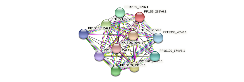 PP1S5_288V6.1 protein (Physcomitrella patens) - STRING interaction network