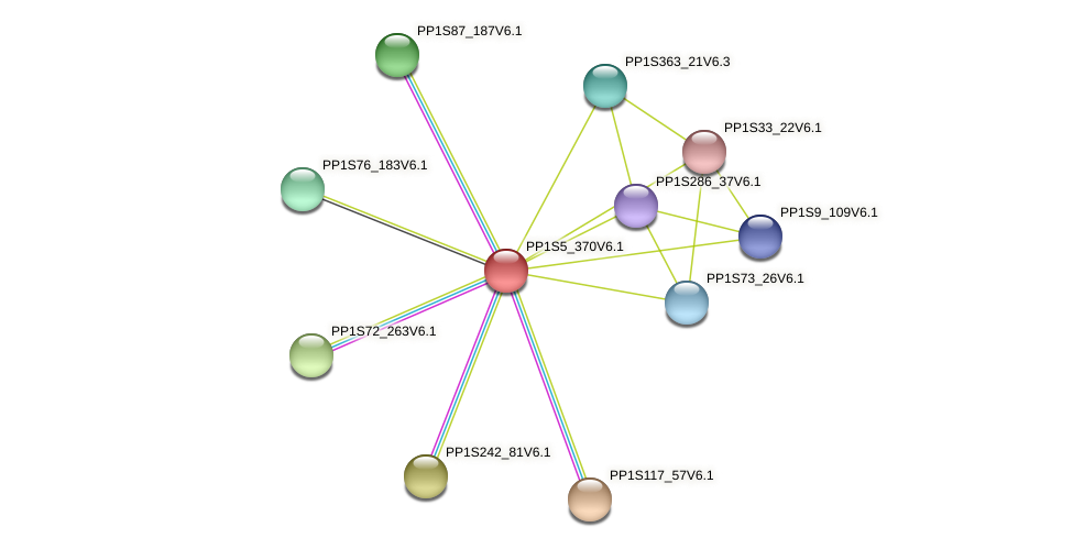 PP1S5_370V6.1 protein (Physcomitrella patens) - STRING interaction network