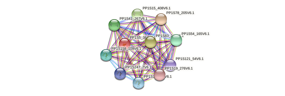 PP1S5_384V6.1 protein (Physcomitrella patens) - STRING interaction network