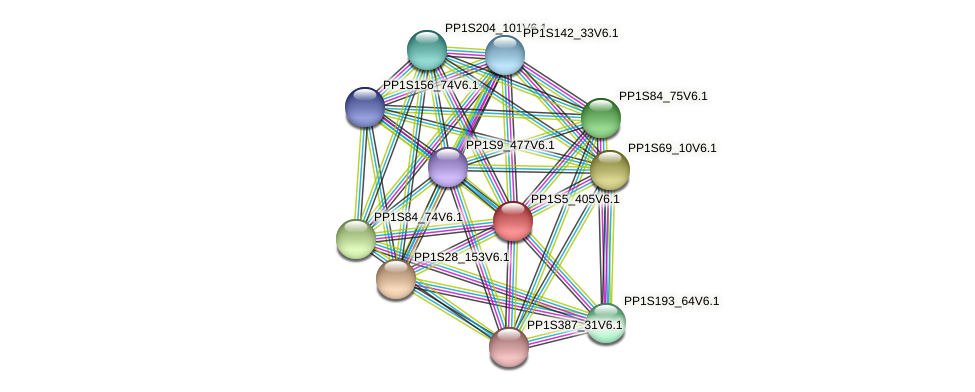 PP1S5_405V6.1 protein (Physcomitrella patens) - STRING interaction network