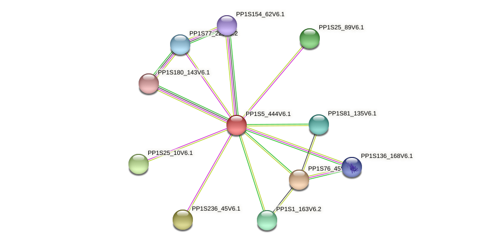 PP1S5_444V6.1 protein (Physcomitrella patens) - STRING interaction network