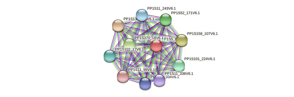 PP1S5_84V6.1 protein (Physcomitrella patens) - STRING interaction network